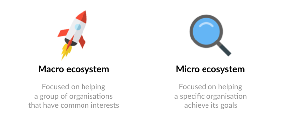 Business ecosystem: macro-level and micro-level