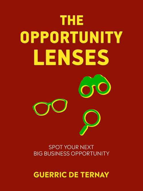 The Opportunity Lenses by Guerric de Ternay - Book Cover